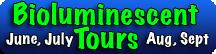 BioluminescentKayakTours