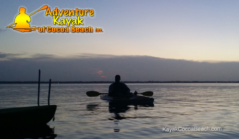 Bioluminescent Kayaking Guide