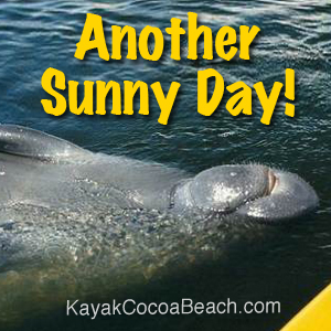 Kayak Cocoa Beach - Guided Kayaking Tours, Eco Adventures in Cocoa Beach, FL