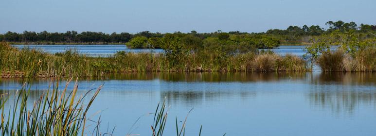 pine island conservation kayak