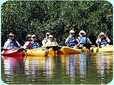 group kayak tours