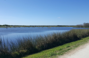 Ritch Grissom Memorial Wetlands at Viera
