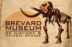 brevard Museum Natural History