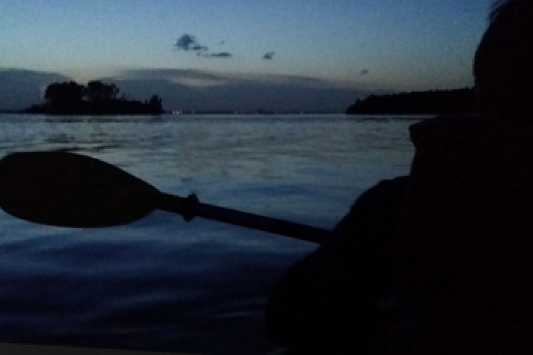 Bioluminescence Kayaking Tours