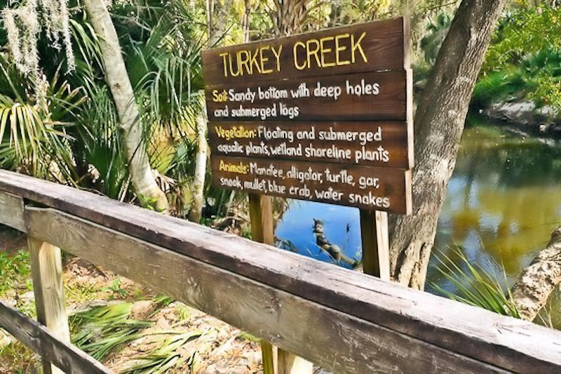 Turkey Creek Sanctuary