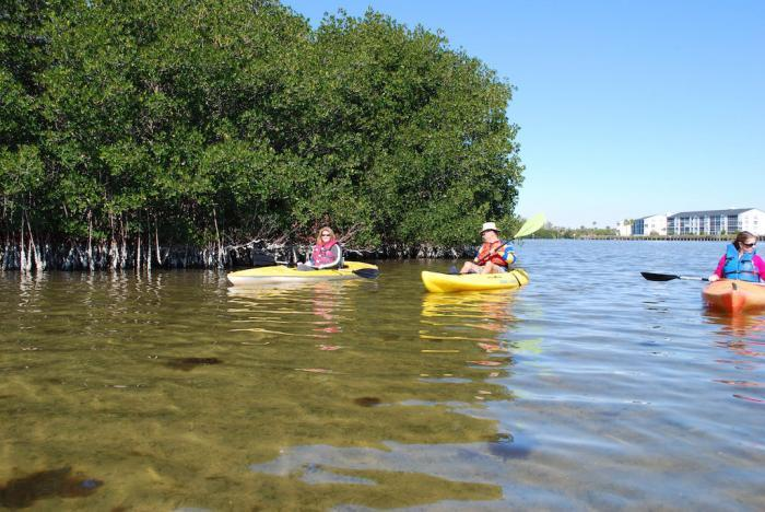 Kayak Tours in  Cocoa Beach's Thousand Islands