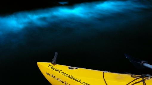 Bioluminescent Kayak Tours in Cocoa Beach