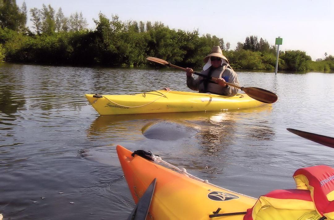 Kayaking Tour In Banana River