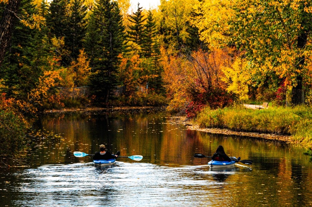 group kayak tours with a guide