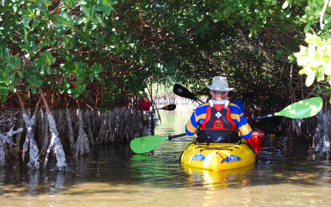 Essential Tips For First-Time Paddlers